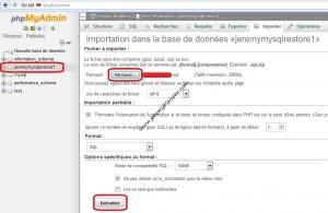 Restaurer wordpress - Importer avec phpMyAdmin